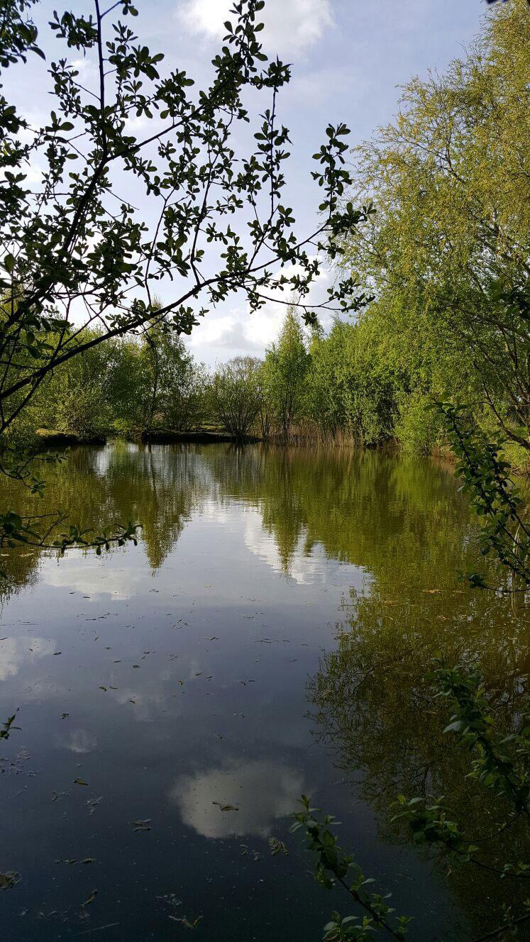 Watermill Leisure Park
