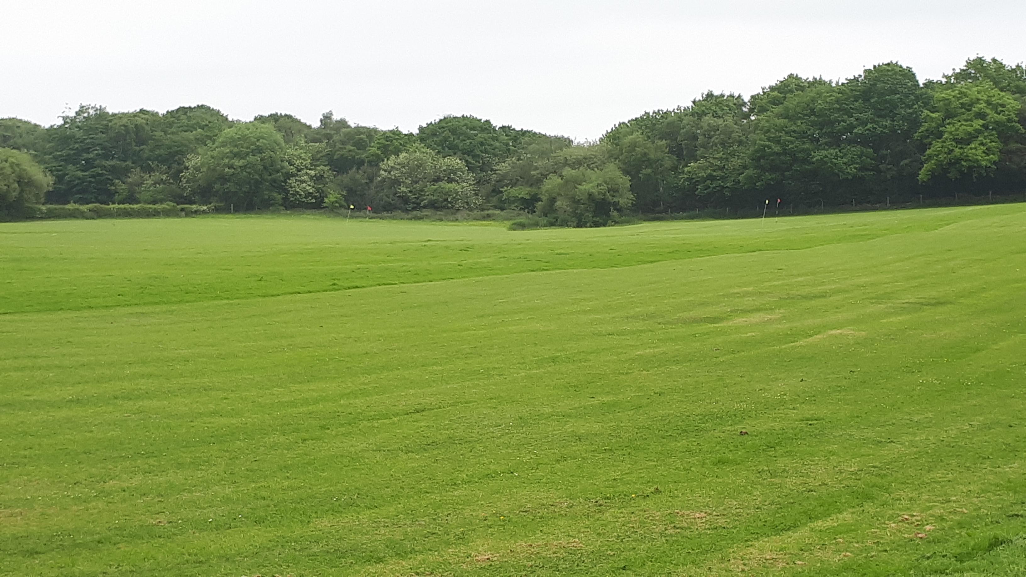 High Moor Farm Park