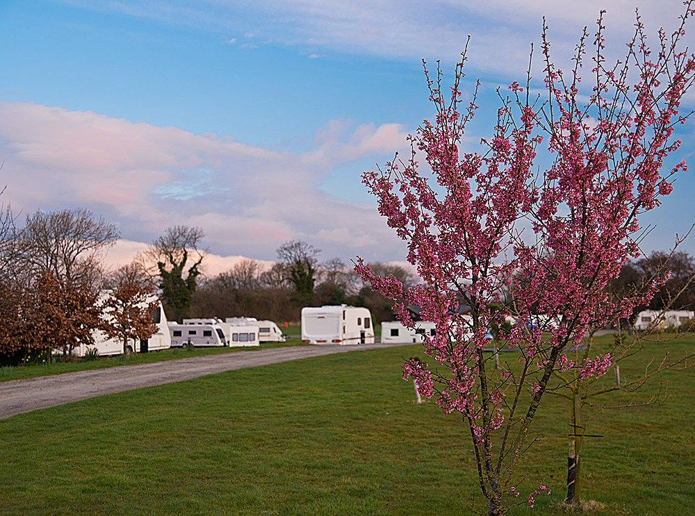 Hillside Caravan Park